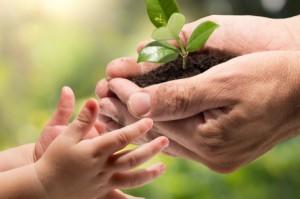 انعكاسات الأوقاف الإيجابية على المنظمات غير الربحية